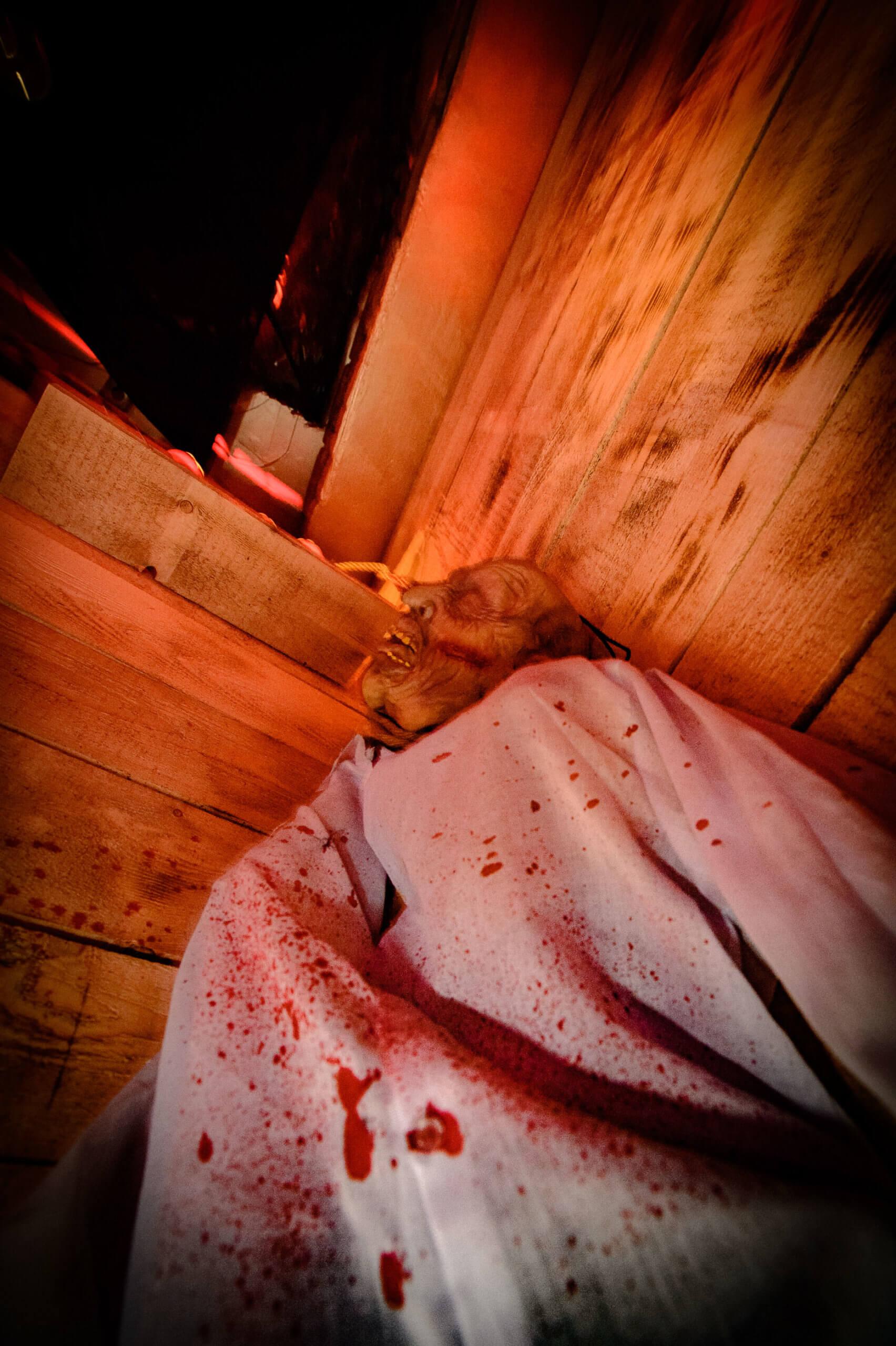 2018_10_31_Chase_Halloween_web (34 von 140)