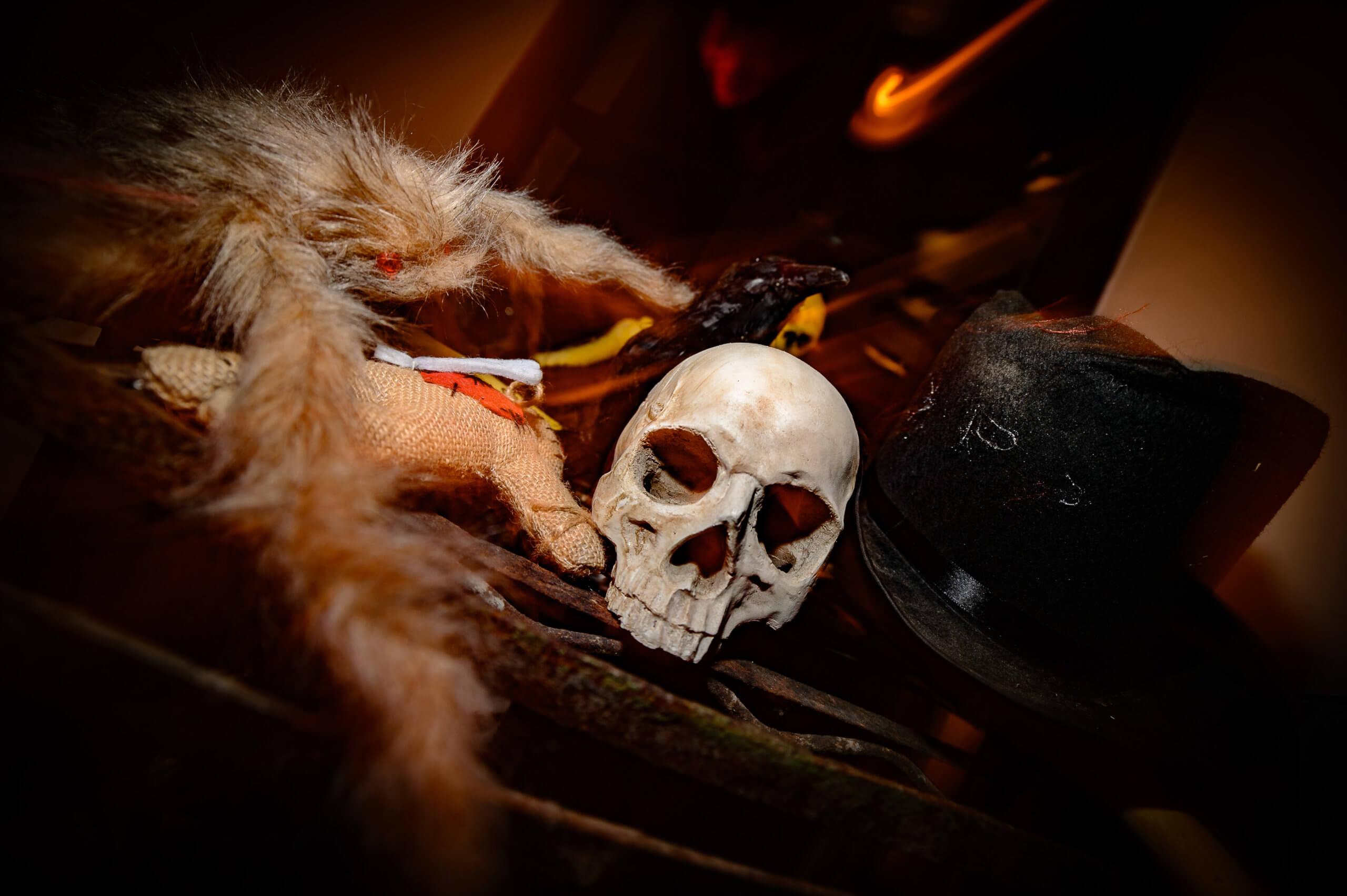 2018_10_31_Chase_Halloween_web (46 von 140)
